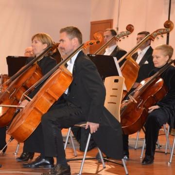 wiolonczeliści podczas koncertu